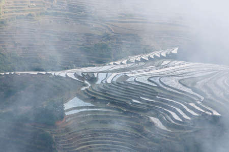yuanyang: Terraced fields at Yuanyang, Yunnan