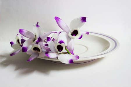 community health care: Dendrobium Nobile flowers
