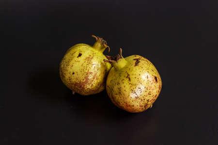 검정색 배경에 석류 나무