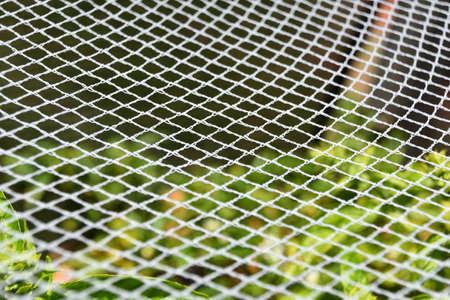 White Netting Stock Photo