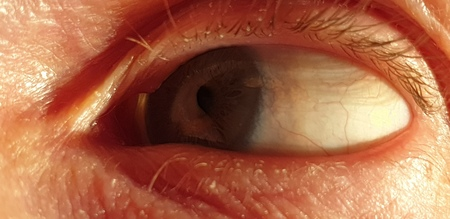 The Human eye in close-up Stock Photo