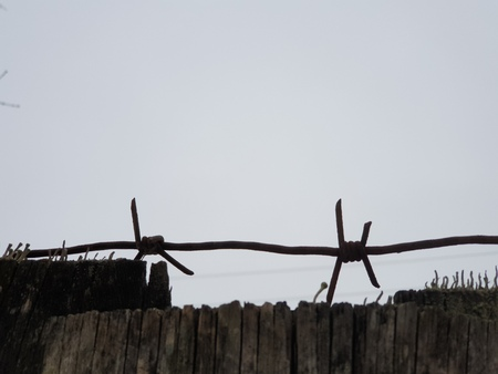 Barbed wire. Barbed wire in close up. 免版税图像
