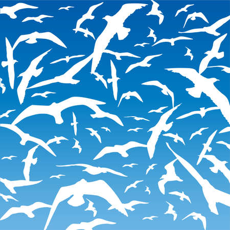 swooping: Flock of Birds Illustration