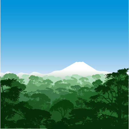 tree canopy: Forest Landscape with Volcano Illustration