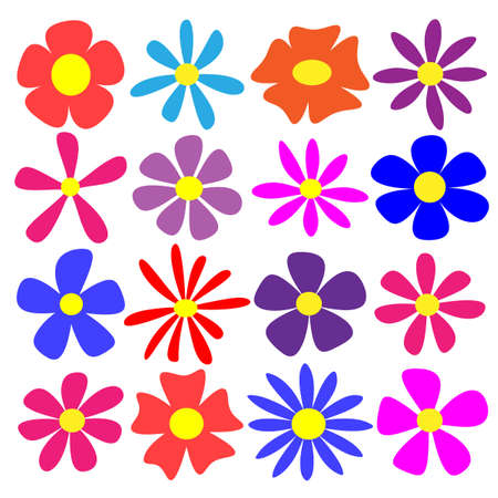selection: A Selection of Vector Flowers Illustration