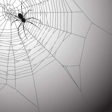 cobweb: A Spiderweb Vector Illustration with Spider Illustration