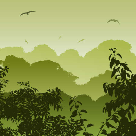 A Green Forest Landscape with Trees Vector