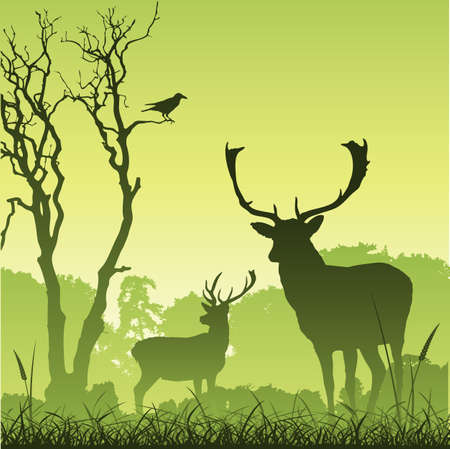 antlers silhouette: Male Stag Deer on a Meadow with Trees and Bird