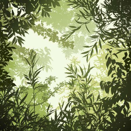 foresta: Sfondo floreale con alberi e foglie