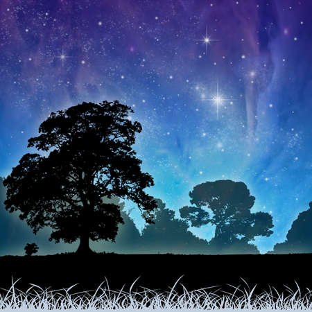 A Country Meadow Landscape with Trees and Night Sky Stock Photo - 8984573