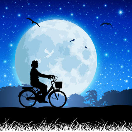 A Vector Landscape with Bicycle and Moon