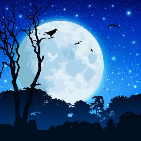 noche y luna: Un paisaje de bosques con la Luna y el cielo nocturno