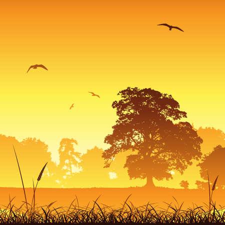 Un paisaje de pradera del país con árboles y aves Ilustración de vector