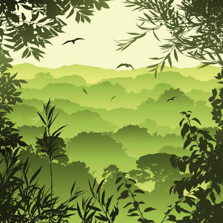 jungle: A Green Forest Landscape with Trees and Leaves