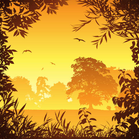 A Country Meadow Landscape with Trees and Birds Stock Vector - 9146459