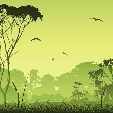 arbol p�jaros: Un paisaje de pradera del pa�s con �rboles y aves Vectores