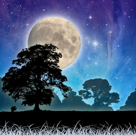 A Country Meadow Landscape with Moon and Night Sky Stock Photo - 9275527