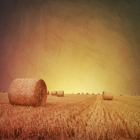 An Artistic Vintage Photo Grunge Landscape with Straw Bales on Farmland photo