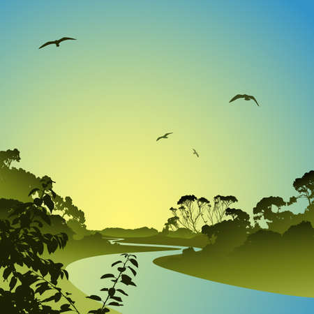 A Forest Landscape with River and Trees Vector