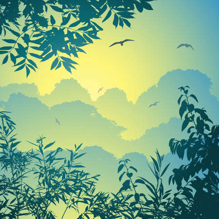 rain forest animal: A Forest Landscape with Trees and Leaves Illustration