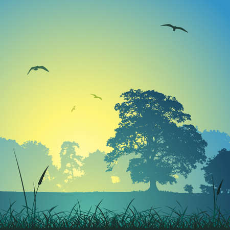 tree in field: A Country Meadow Landscape with Trees and Birds