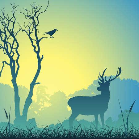Ciervo de ciervo en un Prado con árboles y aves
