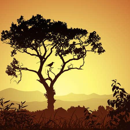 arbol p�jaros: Un pa�s Meadow paisaje con �rboles y aves