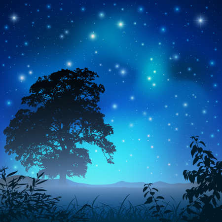 A Night Sky with Big Tree and Stars Stock Vector - 11890847