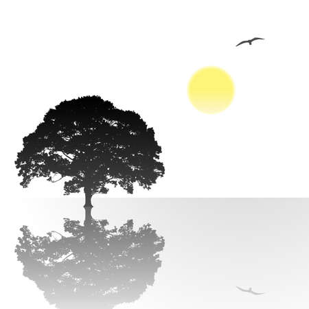 standing water: A Single Tree Standing Alone with Reflection in Water Illustration