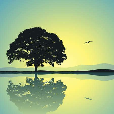 Un solo árbol de pie a solas con reflejo en el agua Ilustración de vector