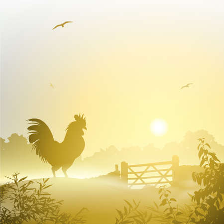 A Misty Morning Landscape with Cockerel, Rooster Vector