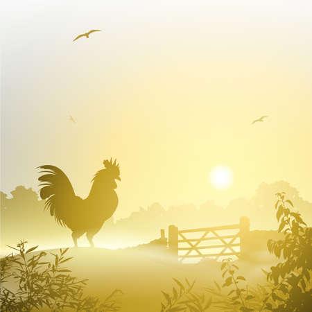 rooster at dawn: Un paesaggio Misty Morning con Galletto, Gallo