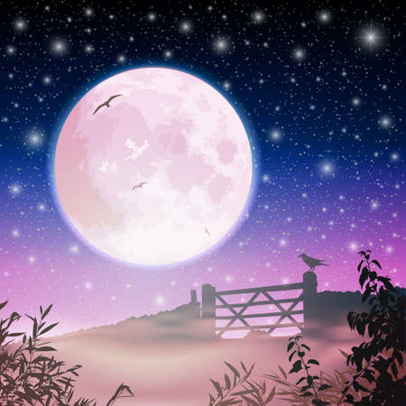 A Misty Country Landscape with Moon and Night Sky Stock Vector - 15800302