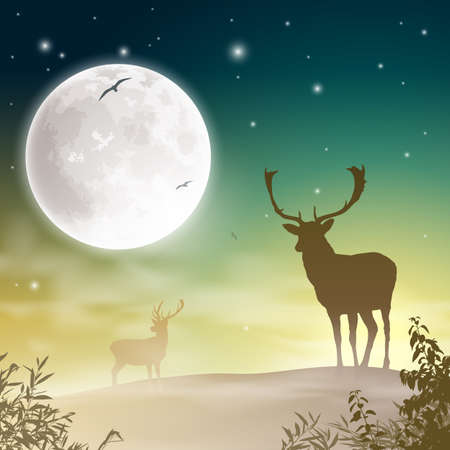 Male Stag Deer on a Misty Meadow with Night Sky and Moon Stock Vector - 16561162