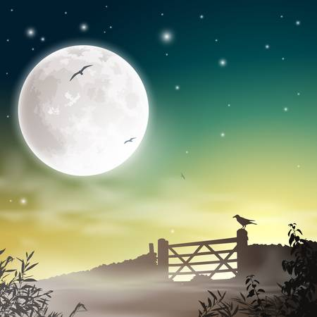 A Farm Gate with Night Sky and Moon Stock Vector - 16561169