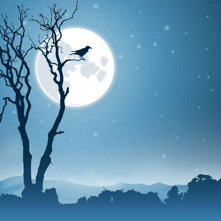birds silhouette: A Country Landscape with Moon and Night Sky Illustration