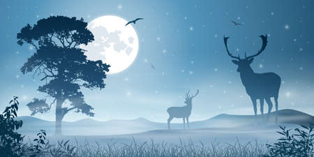 Male Stag Deer on a Misty Meadow with Night Sky and Moon Vector