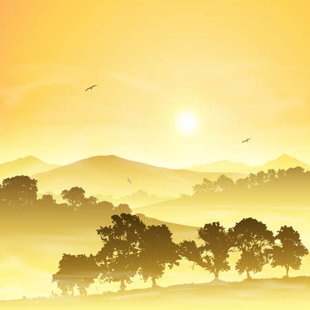 A Misty Countryside Landscape with Sunrise, Sunset Vector