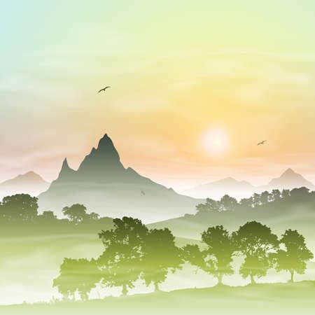misty forest: Un paisaje del bosque brumoso con las monta�as y la puesta del sol, salida del sol