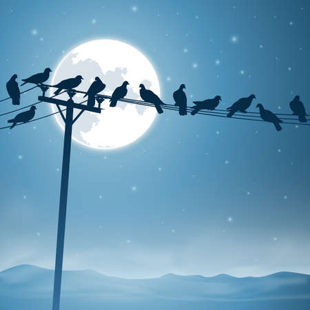 Lots of Birds on Telephone Lines with Night Sky and Moon Vector