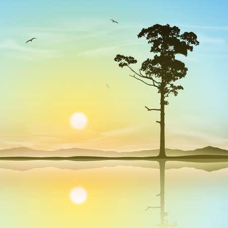 morning sunrise: A Single Tree Standing Alone with Reflection in Water Illustration