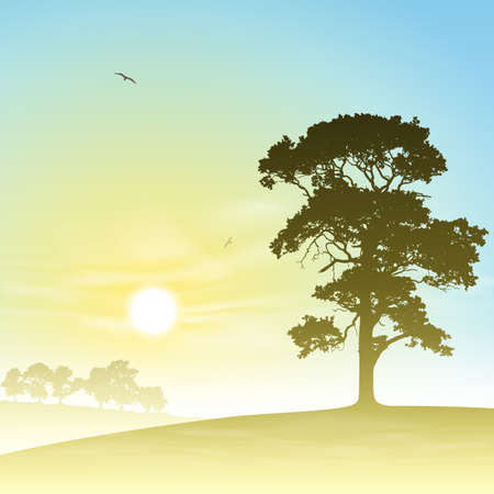 A Country Meadow Landscape with Trees and Sunset, Sunrise Vector