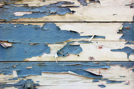 deteriorated: A Grunge Background with Old Wooden Boards and Peeling Paint