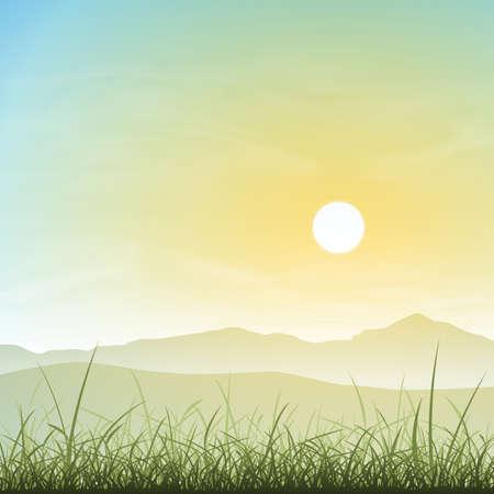 misty: A Misty Landscape with Grass and Sunset, Sunrise