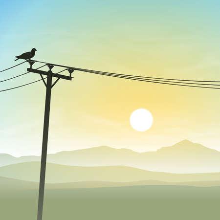 misty: A Bird on Telephone Lines with Misty Sunrise, Sunset