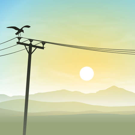telephone line: A Bird on Telephone Lines with Misty Sunrise
