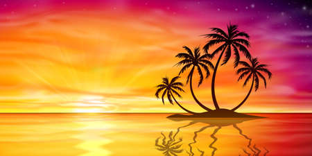 puesta de sol: Una hermosa puesta de sol, salida del sol con la isla y palmeras
