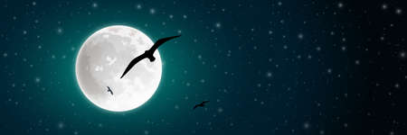 stars sky: Night Sky with Moon and Bird silhouette. Illustration
