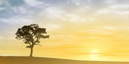 solitary: A Lone Tree with Misty Sunset, Sunrise.  Illustration