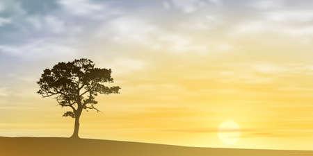 lone tree: A Lone Tree with Misty Sunset, Sunrise.  Illustration